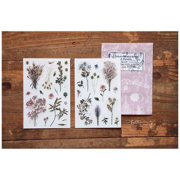 Lin Chia Ning Print-on stickers-Dried Flower / 4 sheets