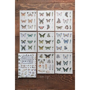 Lin Chia Ning Butterfly Sticker Set / 32 sheets